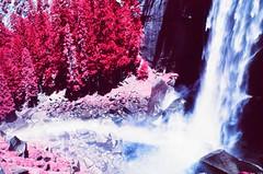 Vernal Falls, Yosemite National Park (cris_that1) Tags: yosemite national park vernal falls mist trail waterfall infrared aerochrome infrachrome fpp film photography project 35mm minolta srt101 yosemitenationalpark