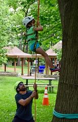 DSC_1278 (Montgomery Parks, MNCPPC) Tags: popupinmontgomeryparks bethesda treeclimbing climbatree tree climbingtrees kids children boys girls arborists elmstreeturbanpark spring may may2017 leaves treetrunks toddler