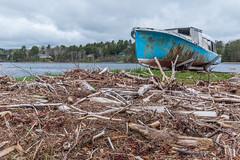 (Wen879) Tags: boat canon70d decaying driftwood sigma1020mmf456 sky water lunenburg novascotia canada passageoftimegrouptheme