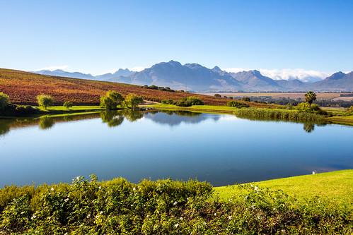Stellenbosch_BasvanOort-4