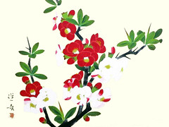 Chinese quince (Japanese Flower and Bird Art) Tags: flower chinese quince chaenomeles speciosa rosaceae hoshun yamaguchi nihonga woodblock print japan japanese art readercollection