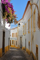 EVORA, PORTUGAL: A narrow cobbled street inside old town with colorful bougainvilleas (christophe.cappelli) Tags: a narrow cobbled street inside old town with colorful bougainvilleas
