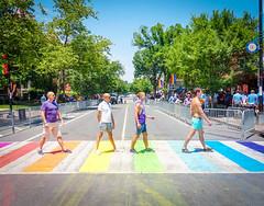 2017.06.10 Painting of #DCRainbowCrosswalks Washington, DC USA 6468