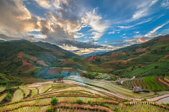 _U1H1356 Mu Cang Chai,Yen Bai 0617 (HUONGBEO PHOTO) Tags: sigma1324mm canoneos1dsmark3 mùanướcđổ tâybắc ruộngbậcthang yênbái mùcangchải asian northwestvietnam peaceful countryside northvietnam hill mountains highland photography colorful clouds sky sunset scenery terraces outdoor landscape