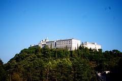 IMGP2664 (proofek) Tags: bitwa cmentarz generałanders italy klasztor montecassino wakacje włochy wspomnienia