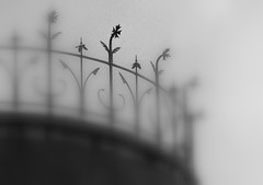 La fleur de métal - The metallic flower (p.franche malade - sick) Tags: bruxelles brussel brussels belgium belgique belgïe europe pfranche pascalfranche panasonic fz200 hdr dxo flickrelite skancheli monochrome noiretblanc blackandwhite zwart wit blanco negro schwarzweis μαύροκαιάσπρο inbiancoenero 白黒 黑白чернобелоеизображение svartochvitt أبيضوأسود mustavalkoinen שוואַרץאוןווייַס bestofbw architectoru iron architetcure tour tower portedehal blur blurism bokeh superbokek metal metallic métalique fleur flower art ou