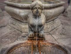 Water Lady (Nourah.A.Edhbayah (Super Flower♥إظبيه)) Tags: ايطاليا الكويت اظبيه عبدالله نوره water lady italy q8 edhbayah kuwait abdullah nourah