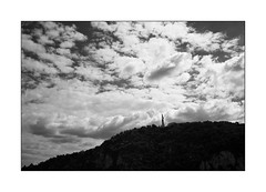 Monument of freedom (Istvan Penzes) Tags: leicammonochromtyp246 leicasummicron35mmv1 penzes manualfocus rangefinder availablelight handheld bw black white redfilter budapest