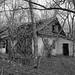 0615 - Ukraine 2017 - Tschernobyl