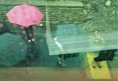 Follow That Yellow Brick Road (michael.veltman) Tags: watercolor art train commute commuting commuter looking down umbrellas station platform rain reflection