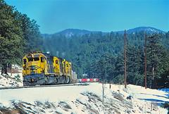 AT&SF 5601               12-12-81 (C E Turley) Tags: railway trains atsf santafe sd45