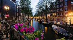 Amsterdam. (alamsterdam) Tags: amsterdam canal bloemgracht evening longexposure reflection holland bridge flowers boats