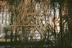001915520004 (James C Taipei) Tags: 格但斯克 波蘭 oldtown