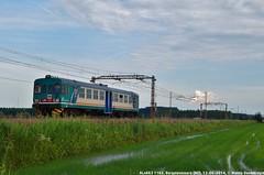 ALn663 1162 (MattiaDeambrogio) Tags: treno treni train trains aln663 1162 borgolavezzaro invio materiale vuoto