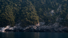 Italian Wilderness (Niclas Matt) Tags: sea water forest nature wilderness italy italytrip trip adventure journey ligure liguria landscape landscapephotography coast cliffs dramatic