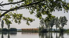 Kolk aan de Bosjessteeg, IJsselmuiden (Gerrit Veldman) Tags: bosjessteeg ijsselmuiden kampen nederland netherlands overijssel kolk trein pool train kamperlijntje bomen trees ganzen goose olympus epl7