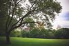 Central park 中央公园 (Jenny Hoo) Tags: centralpark newyork newyorkcity newyorker nyc manhattan city summer summertime 纽约 曼哈顿 中央公园 explore