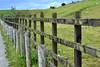 Teesmouth National Nature Reserve (1denela) Tags: teesmouthnationalnaturereserve beginnerdigitalphotographychallengewinner