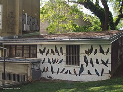 zagreb-birds_in Art park