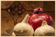 "A no-no for Fido! -Macro Mondays -""poisonous"" (Karon Elliott Edleson) Tags: macromondays poisonous onions garlic textures deadly stilllife fido canines nono"