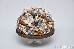 #Schelpen #Bol Supreme (floralworkshops) Tags: plateau schaal schelpen