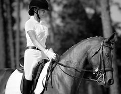 Dressage -Stable View, Aiken SC (Our View Photography) Tags: horseshow dressage tamron150600mm aikensc horses southcarolina bw blackandwhite