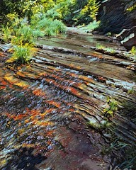 """Terraced Streambed"" (Paul Ewing) Tags: vinci canyon westfork westforkoakcreek arizona southwest digitalpainting"