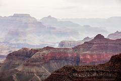 Or is it Something Else Entirely? (Thomas Hawk) Tags: america arizona grandcanyon grandcanyonnationalpark thegrandcanyon usa unitedstates unitedstatesofamerica grandcanyonvillage fav10 fav25 fav50 fav100