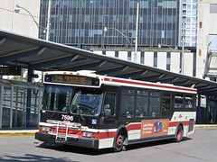 Toronto Transit Commission 7596 (YT   transport photography) Tags: ttc orion vii 7 bus toronto transit commission
