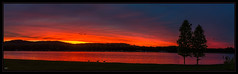 Ducks at Sunset (Kev Walker ¦ From Manchester) Tags: beautiful canon1100d canon1855mm carnforth clouds colorfull ducks england hdr lake lancashire northwest panorama panoramic scenics sky skyline sunset tranquil water waterways widescreen