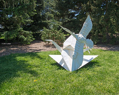 DSC_1500 (critter) Tags: origami mortonarboretum mortonarb kevin box cranes sculpture steel art