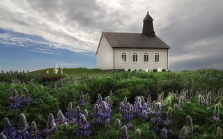 Frühling in Island