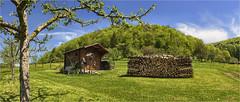 Alblandschaft (Robbi Metz) Tags: deutschland germany badenwürttemberg schwäbischealb landschaft landscape hütte hut wald forest canoneos