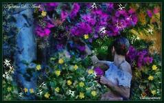 In giardino a Giugno - 2017 (agostinodascoli) Tags: art digitalart digitalpainting photoshop photopainting creative impressionismo cianciana sicilia colore fullcolor fiori donna piante