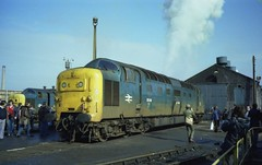"""55019 """"ROYAL HIGHLAND FUSILIER"""" starts one of her engines at Doncaster, 27th February 1982.  55005 beyond will remain forever silent. (colin9007) Tags: english electric napier deltic br class 55 coco type 5 55005 55019 d9005 d9019 royal highland fusilier prince waless own regiment yorkshire doncaster dps"""