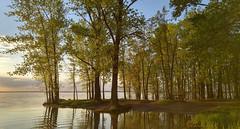 ... (Amiela40) Tags: fleuve river water paisible calme