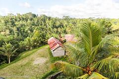 Tempelanlage Gunung Kawi (Kurt Hollstein) Tags: tempel bali gunung kawi indonesien