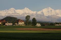 Berner Dreigestirn Eiger ( BE - 3`970 ) - Mönch ( BE-VS - 4`107m ) - Jungfrau ( BE-VS - 4`158m ) mit Jungfraujoch dazwischen ( Berg montagne montagna mountain ) in den Berner Alpen - Alps im Berner Oberland im Kanton Bern und Wallis - Valais der Schweiz (chrchr_75) Tags: hurni christoph chrchr chrchr75 chrigu chriguhurni mai 2017 albumdreigestirneigermönchjungfrau dreigestirn eiger mönch jungfrau alpen alps kantonbern schweiz suisse switzerland svizzera suissa swiss berg mountain montagne bergeiger albumeiger berner montagna oberland