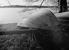 Rowing season (Evolved Vision) Tags: mamiya645 mamiyasekorc45mmf28 fujifilmacros100 ilfordid11 epsonv550 blackandwhite rowingboat film mediumforrmat sunny