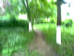 Fotografie33798 (chicore2011) Tags: littlepark path