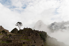 Machu Picchu_099_20170428_DSC_6369.jpg
