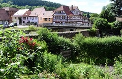 Fairy garden behind the townwall of Themar (:Linda:) Tags: germany thuringia town themar townwall garden halftimbered bridge redrose climber
