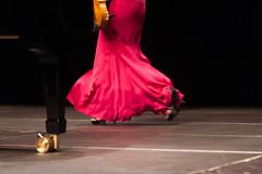 Leonhard Fuchs' flower (S. Hemiolia) Tags: violinista violinist fucsia rosa abitolungo dress music musica musician musicista gambe legs eveninggown longrobe concerto concert live she woman donna