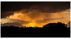 Sunset over Windsor UK (spencerrushton) Tags: spencerrushton spencer sun spring windsor wood walk windsorgreatpark woods uk windsoruk longwalk sunset red yellow orange canonl colour canon canonlens 24105mm canon24105mmlf4 5dmkiii canon5dmkiii black sky outdoors nature raw lightroom clouds storm uknature
