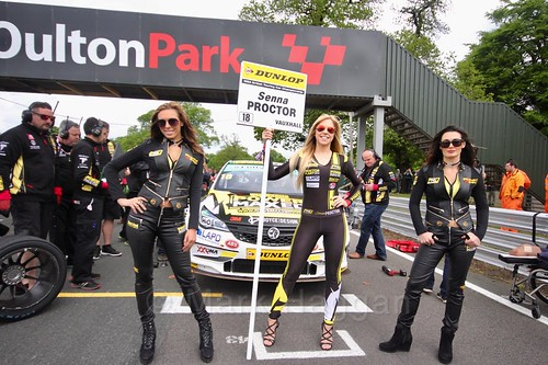 Senna Proctor on the BTCC grid at Oulton Park, May 2017