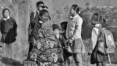 NEPAL, Kinder rund um Pokhara, 16210/8513 (roba66) Tags: child children kinder people menschen nepalesen schilkinder reisen travel explore voyages roba66 visit urlaub nepal asien asia südasien pokhara kids jungen mädchen girls blackwhite bw sw branco negro blackandwhite blancoenero blancoynegro monochrome byn bretoebranco einfarbig schwarzweis
