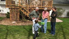 "Paul Hunts Easter Eggs with Grandma and Grandpa Morton • <a style=""font-size:0.8em;"" href=""http://www.flickr.com/photos/109120354@N07/34789156322/"" target=""_blank"">View on Flickr</a>"