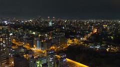 Osaka Tower View 07...
