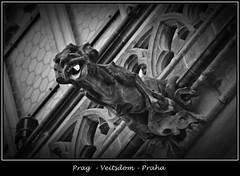 Gargoyles - 1 (fotomänni) Tags: prag praha prague veitsdom gargoyles wasserspeier steinfiguren skulpturen skulptur sculpture kunst schwarzweis blackwhite noirblanc gargouille manfredweis