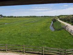 Uitzicht vanuit bezoekerscentrum Reitdiep (Jeroen Hillenga) Tags: reitdiep hetgroningerlandschap groningen landschap bezoekerscentrum debuitenplaats netherlands nederland noorderhogebrug